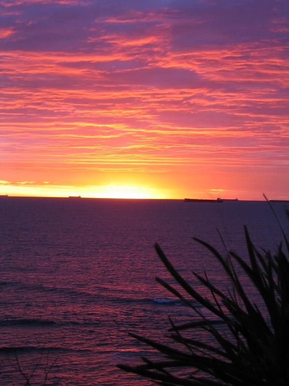 dawn patrol, JD Reef