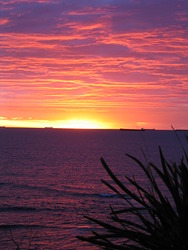 dawn patrol, JD Reef photo
