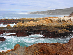 Coastline in break zone, Spooners Cove photo