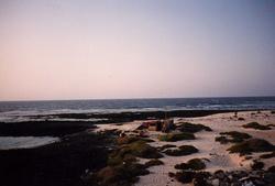 Majanicho photo