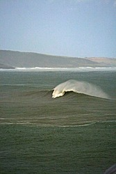 Fennels Bay photo