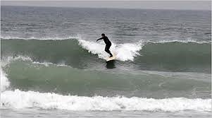 Surfing at Montauk Point, Montauk Point - Turtles
