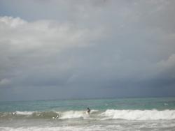 Hawaiizinho photo
