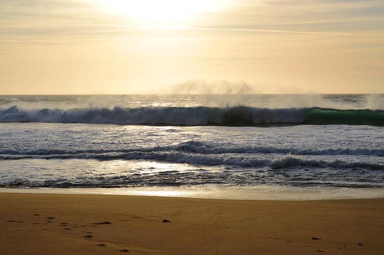 Gray Whale Cove surf break