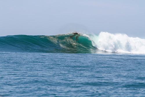 Mexican Paradise, Hammerhead