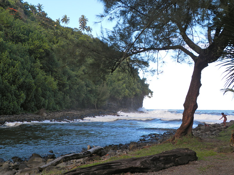Hakalau surf break