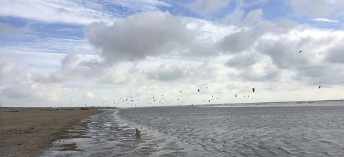 Kite Surfers, Camber Sands