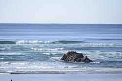 Joe Morgan - SUP Surfer, Arcadia photo