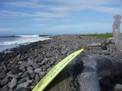 Gray Blue Green, Punta Mango photo