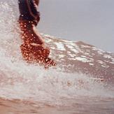 Manolo - El pino, Playa la Carihuela