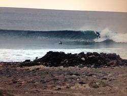 Late take off, Las Salinas photo