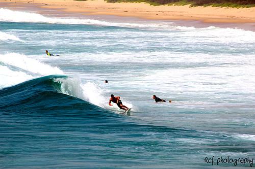 Woonona Surfer