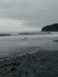 Port Renfrew photo