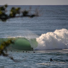 Yes there is a guy in there, Shark Island (Cronulla)