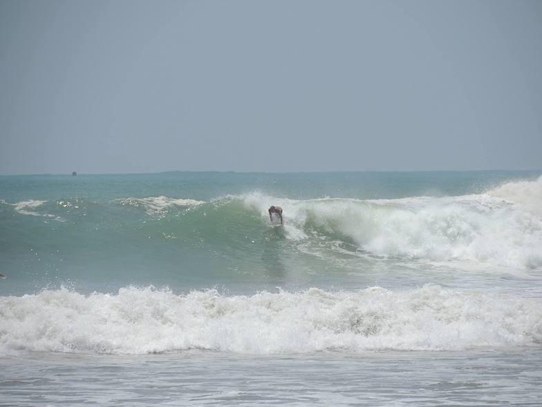 Galle Wave Company, Dewata