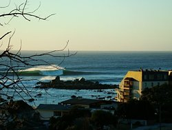 antonio barrera, Algarrobo photo
