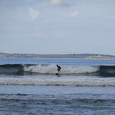 Surfing at Point leo