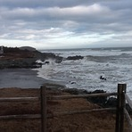 Pt. Michaud, The Cape