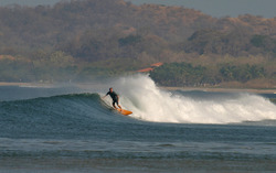 El Estero De Tamarindo photo