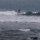 January light wind day, Pirates Cove