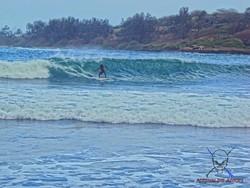 Blue Wave !, Petit Sancho photo