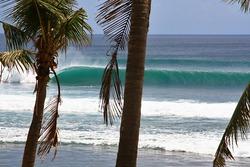 Surf Berbere Bali Indonesia, Balangan photo