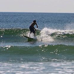 The boss, Bonnet Shores Point photo