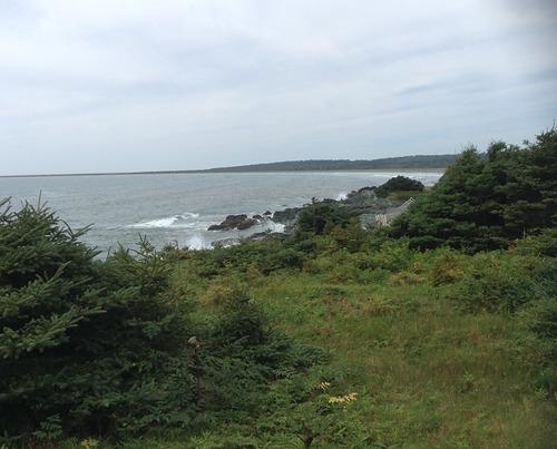 Rugged coast, Michaud Point