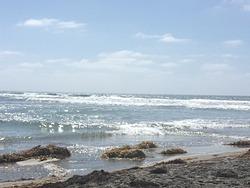 San Elijo beach near the cove, San Elijo State Beach photo