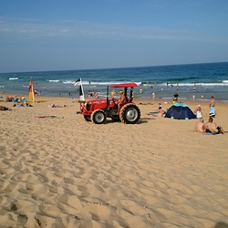 Shelly's Tractor, Shelley Beach photo