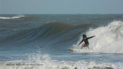 Alvin Rico, EL Muelle photo