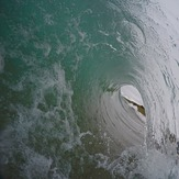 Shorey, Wainui Beach - Whales
