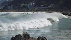 Close out set, Houghton Bay photo
