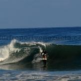 Surfer Carlucho, Point Pelua