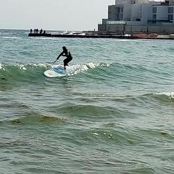 Sup surf club Odessa, Arcadia photo