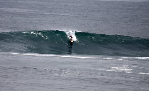 La Isla , 2010