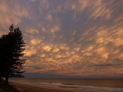 Sunset at Pines, Wainui Beach - Pines photo