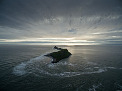 Worm's Head, Crabart photo