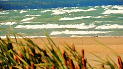 Cat Tails Sauble Beach Waves photo