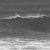 Wave in pato, Los Patos