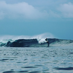 Silva Island-P Land photo