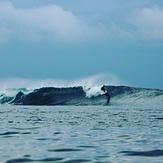 Silva Island-P Land