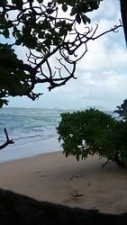 The Point, Kualoa Point photo