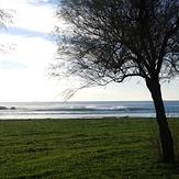 A pic in Matosinhos beach