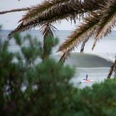 Through the Bushland, Shark Island (Cronulla)