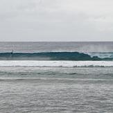 Long tube, Ricks Reef