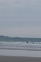 Devils punch bowl beverly beach, Otter Rock
