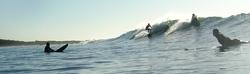 Surf Camp Green Island photo