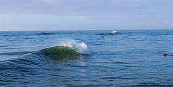 Tip top, Westport Breakwater photo