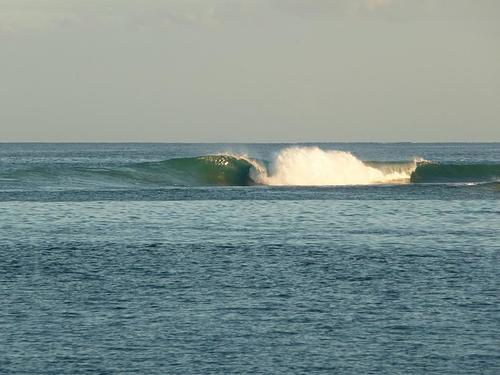 Rare right handed on the opposite reef, Club Med